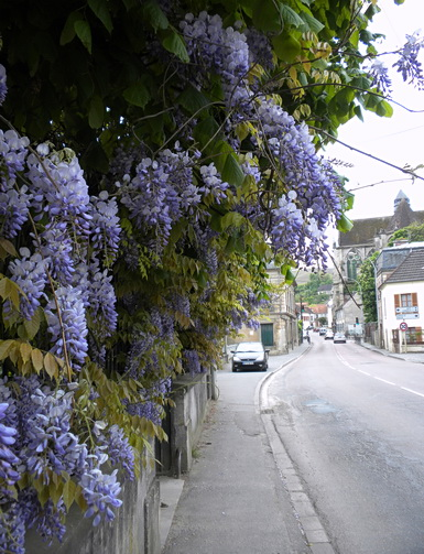 Cycling through picturesque old French towns in Champagne, France 2009. Photo by J. Becker