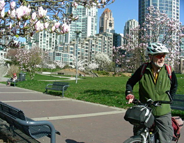 Magnolia and cherry blossom trees along Seaside bike path. North False Creek, David Lam Park. Vancouver BC. Photo by J. Chong 2013