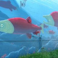 Salmon Art Leaps Into Pacific West Coast Imagination