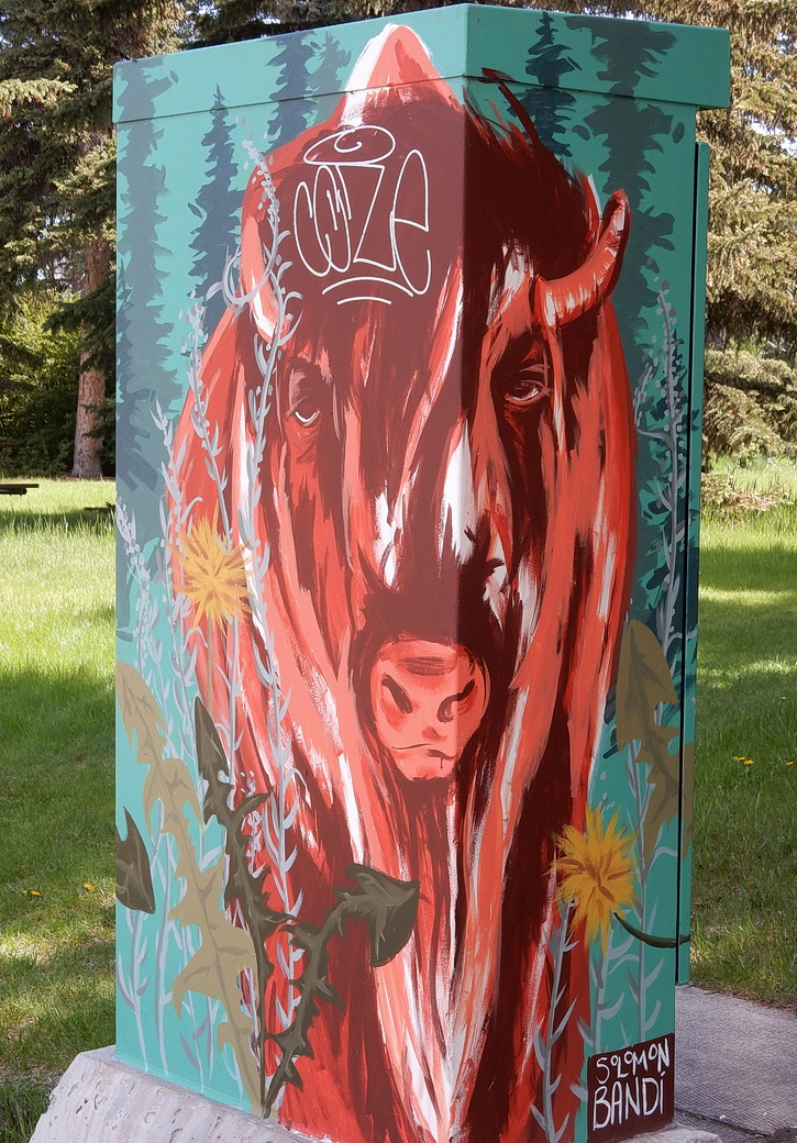 Bison art graces utility box near Rideau bike-pedestrian bridge by Elbow River. Calgary, AB 2016. Photo by J.Chong