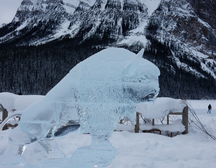 Bison ice sculpture. Lake Louise, Alberta 2017. Photo by J.Chong